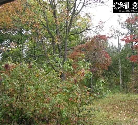 155 Chartwell Road, Columbia, SC 29210 (MLS #457219) :: Home Advantage Realty, LLC