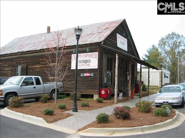 103 Clark Street, Chapin, SC 29036 (MLS #458893) :: EXIT Real Estate Consultants
