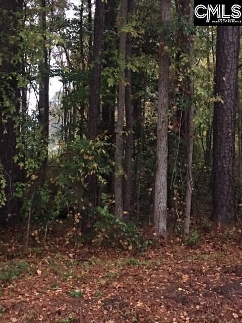 0 Guppie Lane, Leesville, SC 29070 (MLS #459869) :: Home Advantage Realty, LLC