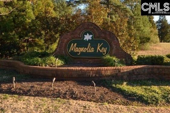 124 Magnolia Key Drive, Chapin, SC 29036 (MLS #461883) :: EXIT Real Estate Consultants