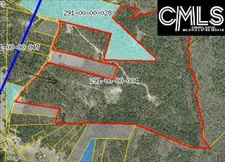 400 Shadowmist Lane, Elgin, SC 29045 (MLS #462775) :: EXIT Real Estate Consultants