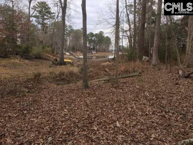 112 Edgewood Drive, Chapin, SC 29036 (MLS #464418) :: EXIT Real Estate Consultants