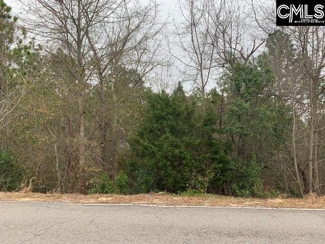 233 Casa Dell Road, Gaston, SC 29053 (MLS #465077) :: EXIT Real Estate Consultants