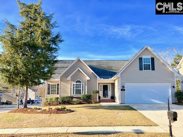 31 Wave Dancer Court, Chapin, SC 29063 (MLS #466433) :: EXIT Real Estate Consultants