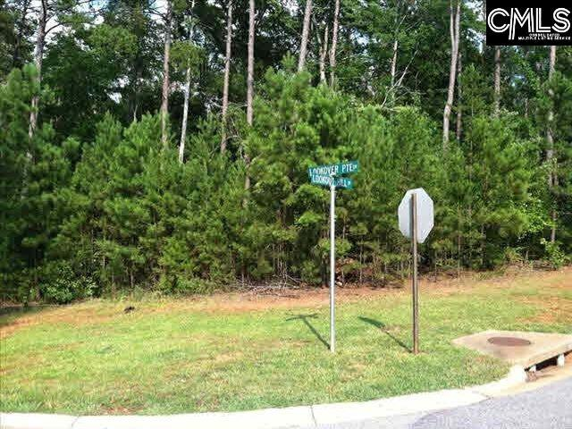 415 Lookover Pointe Drive #69, Chapin, SC 29036 (MLS #467665) :: EXIT Real Estate Consultants