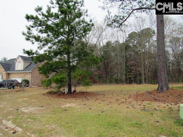 18 Mauser Drive, Lugoff, SC 29078 (MLS #468925) :: The Olivia Cooley Group at Keller Williams Realty