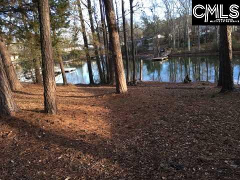 610 Pine Meadow Court, Chapin, SC 29036 (MLS #471251) :: Resource Realty Group