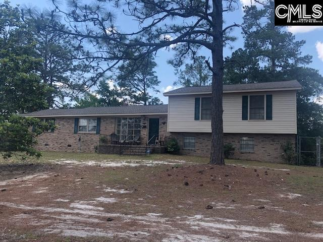401 N Chelsea Road, Columbia, SC 29223 (MLS #473502) :: The Olivia Cooley Group at Keller Williams Realty