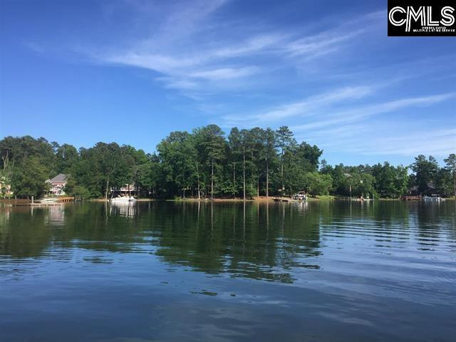 229 Lake Estate Drive, Chapin, SC 29036 (MLS #473880) :: Home Advantage Realty, LLC