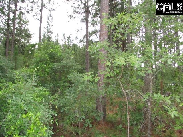 Lot 2 Savannah Oaks, Wagener, SC 29801 (MLS #474453) :: The Latimore Group