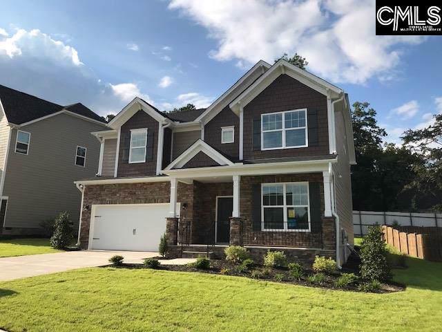 216 Golden Fluke Drive, Lexington, SC 29072 (MLS #479057) :: EXIT Real Estate Consultants