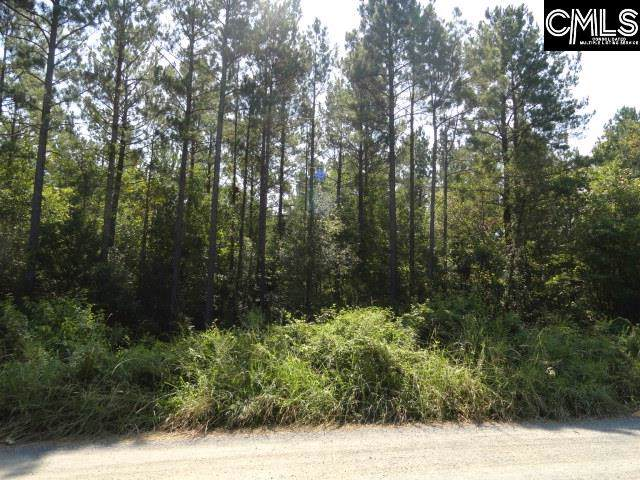 0 Glade Springs Road #31, Little Mountain, SC 29075 (MLS #479542) :: EXIT Real Estate Consultants