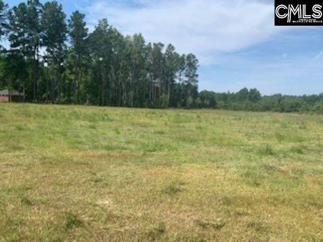640 W Emerald Lake Drive, Sumter, SC 29150 (MLS #480381) :: Home Advantage Realty, LLC