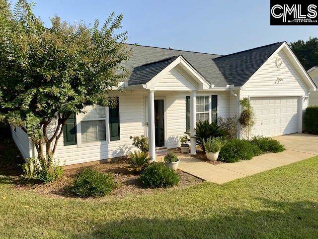 112 Candar Court, Chapin, SC 29036 (MLS #480859) :: The Olivia Cooley Group at Keller Williams Realty