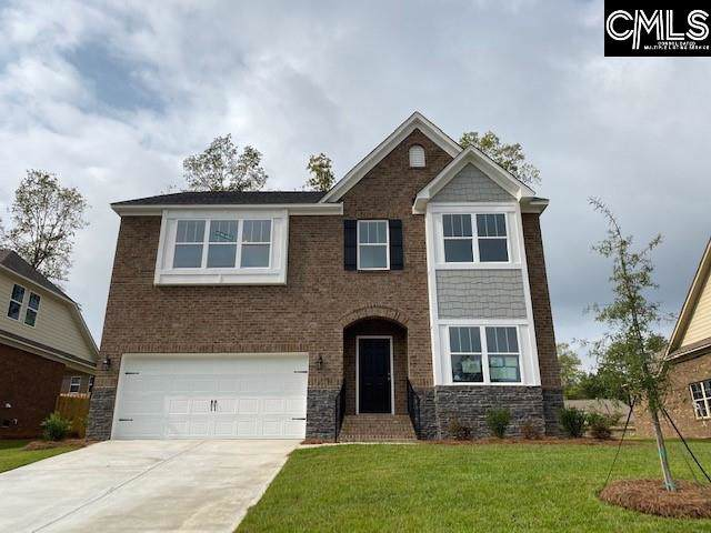 177 Cedar Chase Lane, Irmo, SC 29063 (MLS #480959) :: The Meade Team