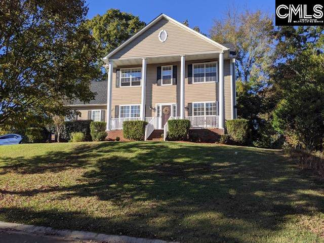 1 Kings Creek Court, Irmo, SC 29063 (MLS #482935) :: EXIT Real Estate Consultants