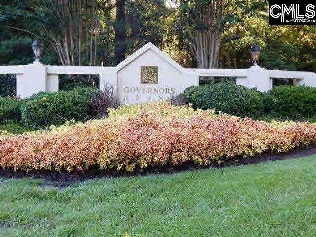 301 Oak Haven Drive, Lexington, SC 29072 (MLS #483273) :: The Olivia Cooley Group at Keller Williams Realty