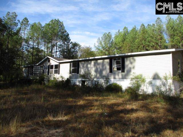 370 Jones Wire Road, Swansea, SC 29160 (MLS #483524) :: Home Advantage Realty, LLC