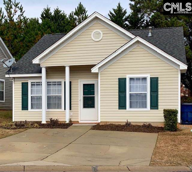 129 Merowey Court, Chapin, SC 29036 (MLS #484313) :: EXIT Real Estate Consultants
