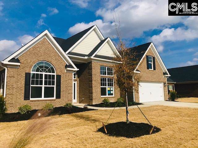 306 Mossback Trail, Lexington, SC 29072 (MLS #485001) :: Home Advantage Realty, LLC