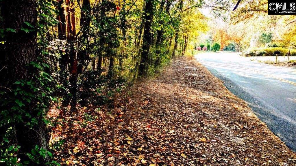 441 Southlake Road - Photo 1