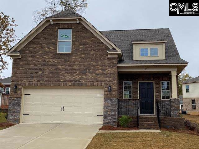 183 Cedar Chase Lane, Irmo, SC 29063 (MLS #485597) :: EXIT Real Estate Consultants
