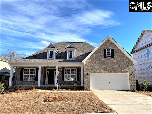 223 Cedar Hollow Lane, Irmo, SC 29063 (MLS #485598) :: EXIT Real Estate Consultants