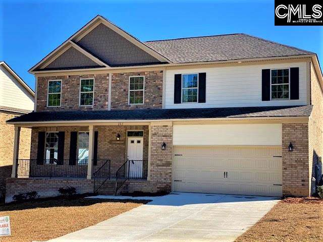 247 Cedar Hollow Lane, Irmo, SC 29063 (MLS #485784) :: EXIT Real Estate Consultants