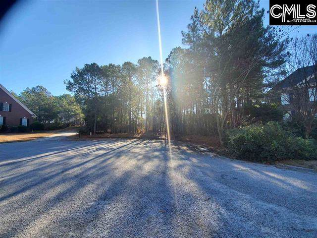 528 Meadow Brook Drive, Columbia, SC 29223 (MLS #485838) :: NextHome Specialists