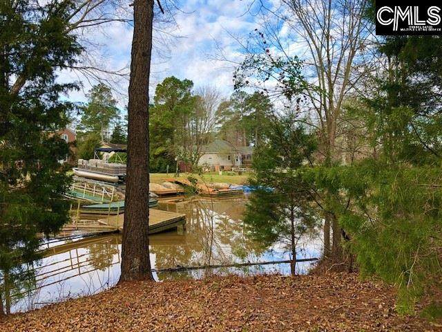 306 Smallwood Drive #17, Chapin, SC 29036 (MLS #488387) :: EXIT Real Estate Consultants