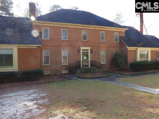 226 Lame Horse Road, Columbia, SC 29223 (MLS #488581) :: The Latimore Group