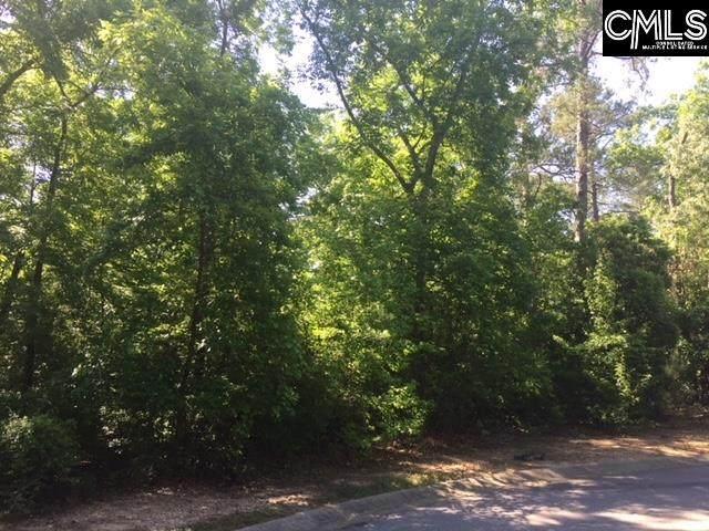 170 Promentory Road, Columbia, SC 29209 (MLS #488964) :: Home Advantage Realty, LLC