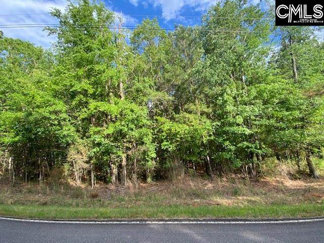 Lot 2 Blacksgate East, Prosperity, SC 29127 (MLS #493786) :: Home Advantage Realty, LLC