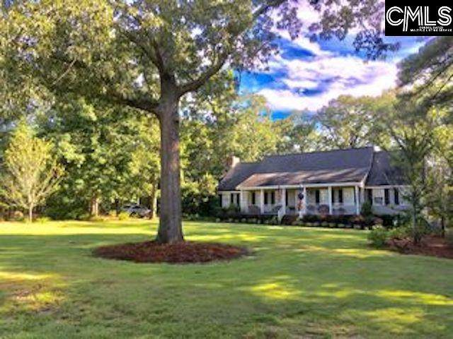 206 Chowning Place, Lexington, SC 29072 (MLS #498222) :: The Meade Team