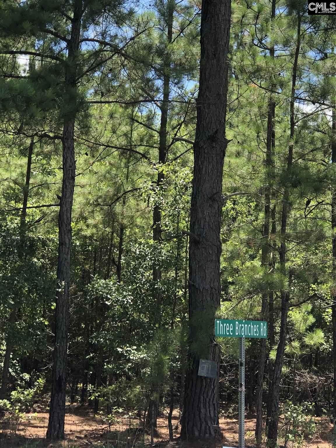 1263 Three Branches Road - Photo 1