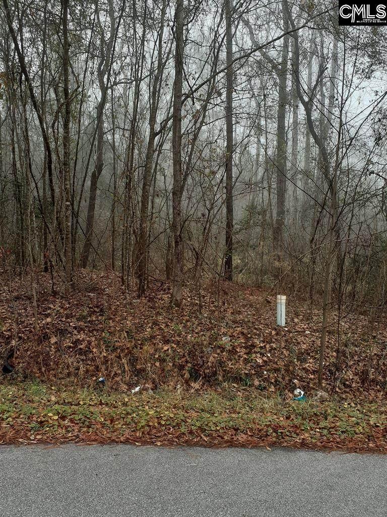 1015 Pineland Drive - Photo 1