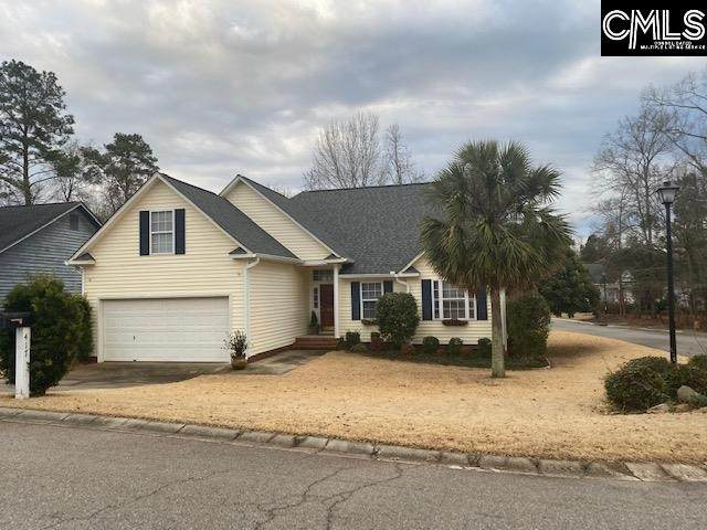 417 Willowood Parkway, Chapin, SC 29036 (MLS #509899) :: EXIT Real Estate Consultants