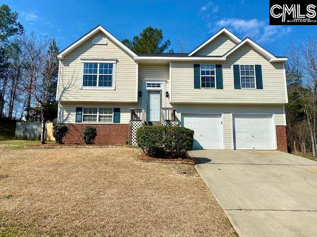 311 Concord Place, Irmo, SC 29063 (MLS #511688) :: The Latimore Group