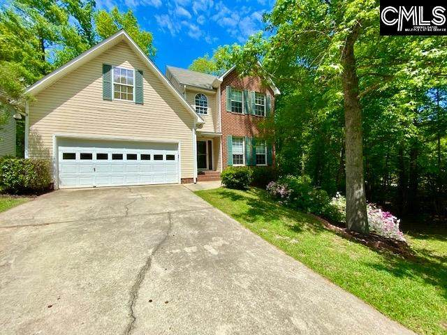 11 Plum Wood Court, Irmo, SC 29063 (MLS #515367) :: EXIT Real Estate Consultants