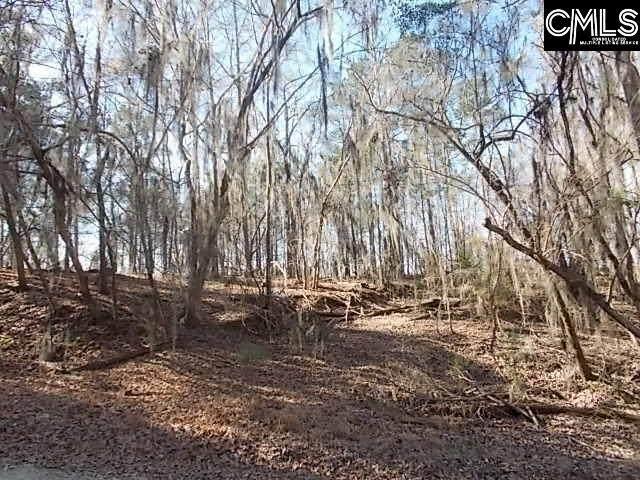 1545 Wild Turkey Road, Camden, SC 29020 (MLS #518224) :: Resource Realty Group