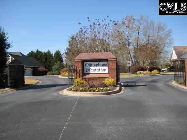 385 Whiteplains Place 27/28, Gilbert, SC 29054 (MLS #518334) :: The Shumpert Group
