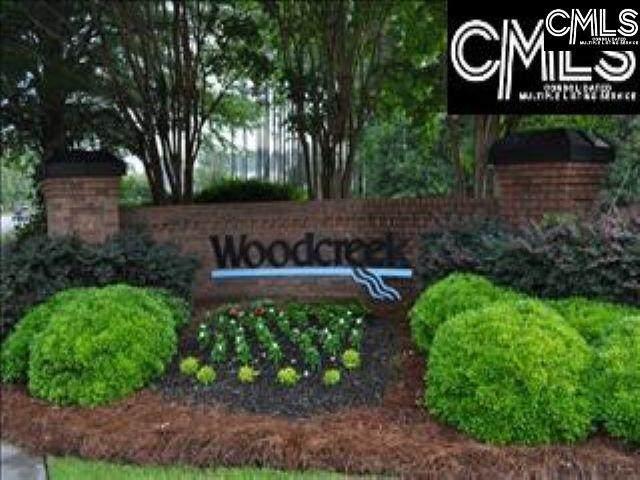 221 Leventis Lane, Lexington, SC 29072 (MLS #518685) :: EXIT Real Estate Consultants