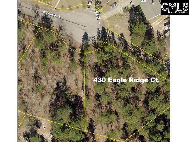 430 Eagle Ridge Court - Photo 1