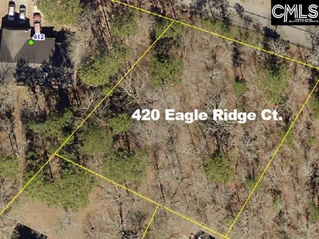 420 Eagle Ridge Court, Gaston, SC 29053 (MLS #520330) :: Gaymon Realty Group