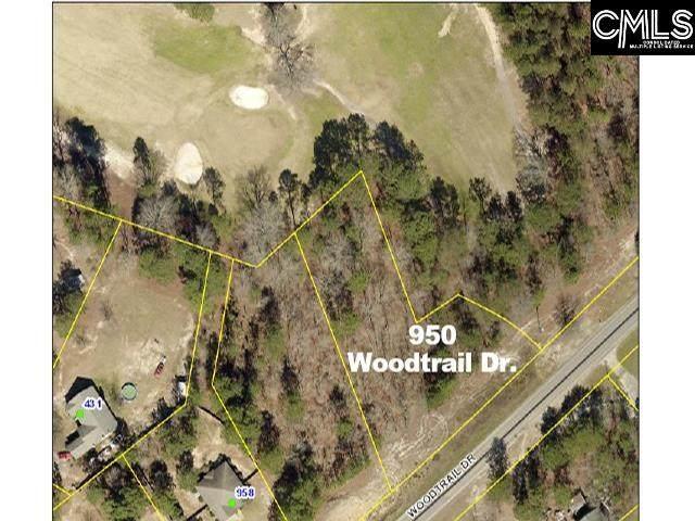 950 Woodtrail Drive, Gaston, SC 29053 (MLS #520333) :: EXIT Real Estate Consultants