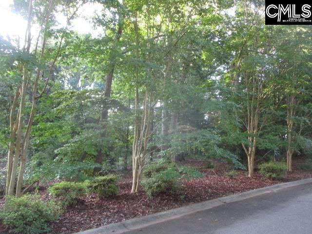 107 Tintagel Court 4-D, Lexington, SC 29072 (MLS #521999) :: The Shumpert Group