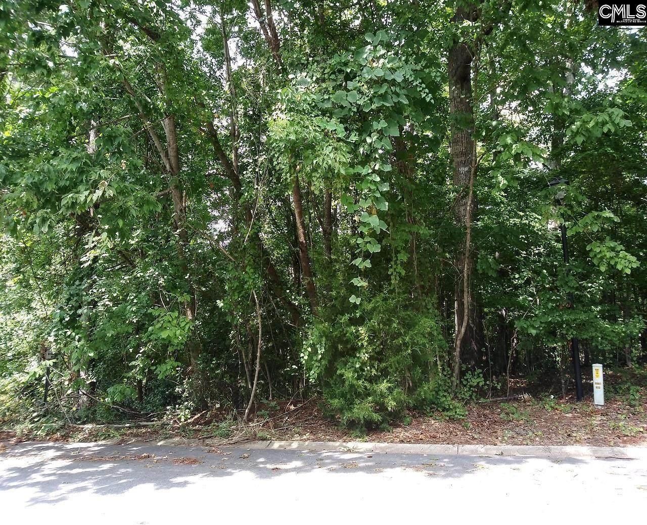 217 Corley Woods Drive - Photo 1