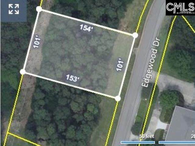 139 Edgewood Drive, Chapin, SC 29036 (MLS #528127) :: EXIT Real Estate Consultants