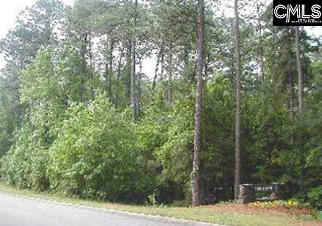 382 Timberlake Drive, Chapin, SC 29036 (MLS #427700) :: EXIT Real Estate Consultants