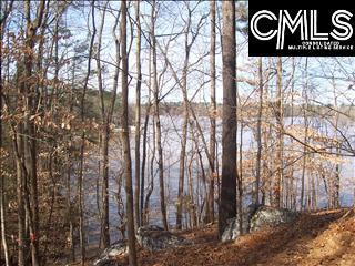 256 Collum Landing Road Lot #7, Batesburg, SC 29006 (MLS #429530) :: NextHome Specialists